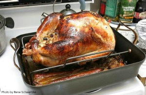 rene schweitzke thanksgiving2 turkey
