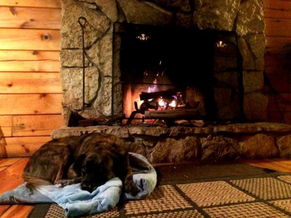 Hocking hills cabins pet friendly